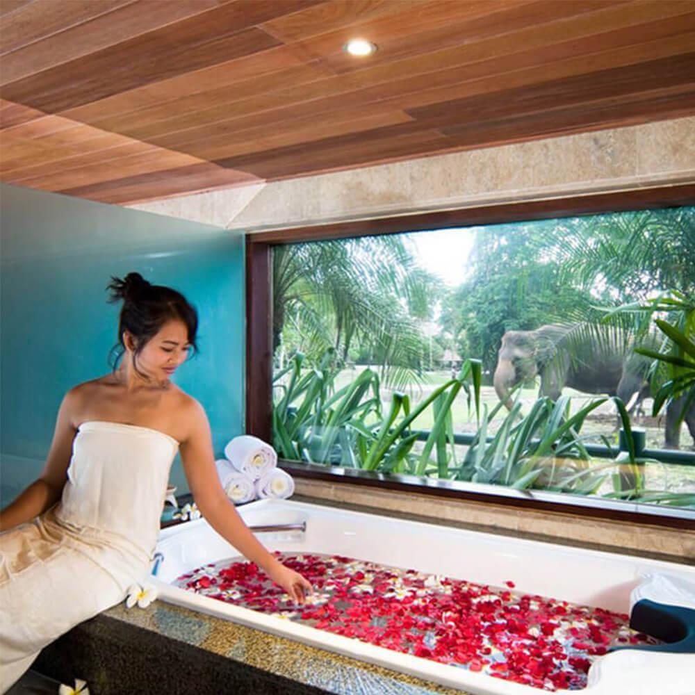 section-home-bottom-spa-mason-elephant-safari-park-and-lodge