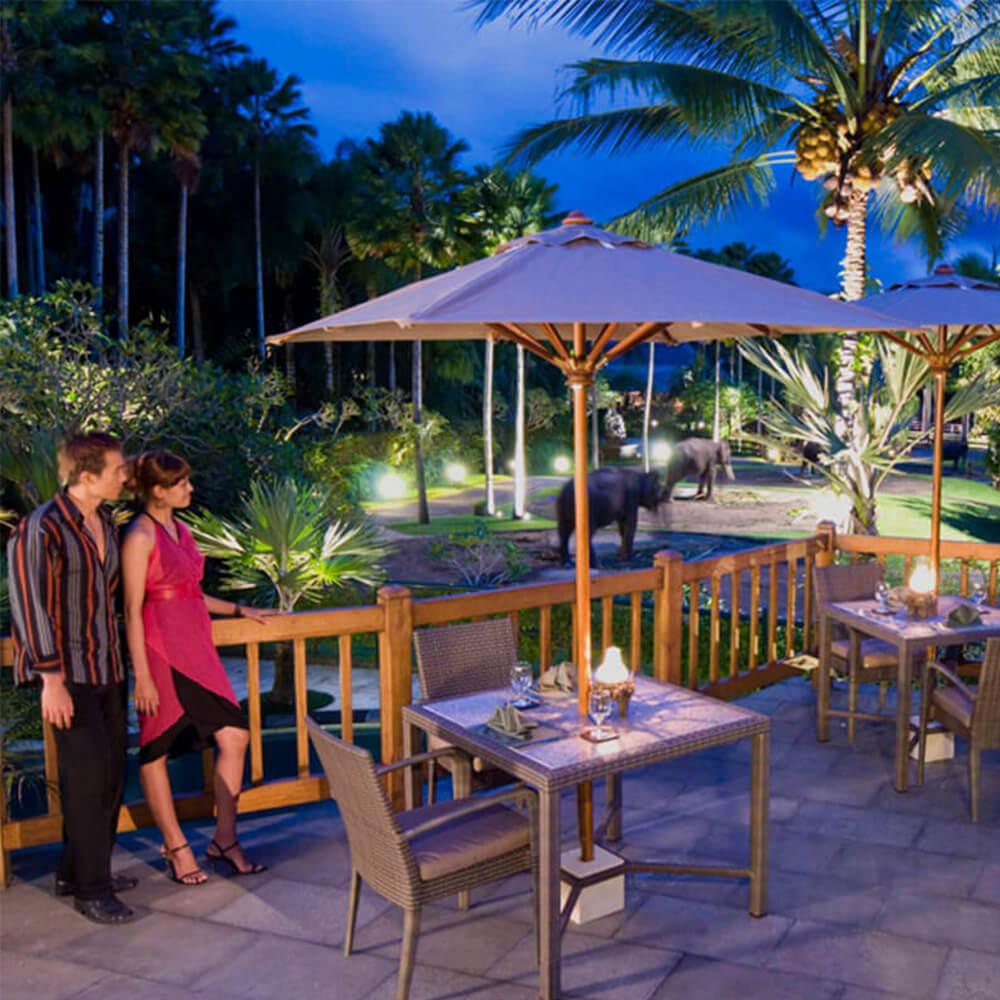 section-home-bottom-terrace-mason-elephant-safari-park-and-lodge
