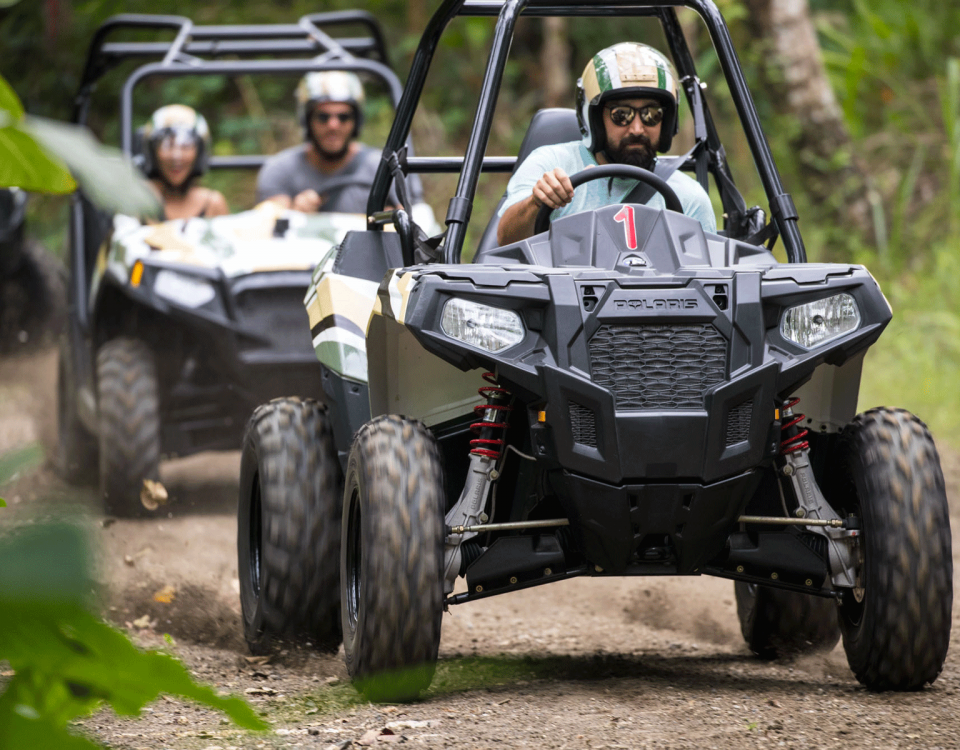 Tear Up the Track with Mason Jungle Buggies